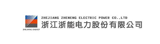 浙江浙能电力股份有限公司董事,总经理